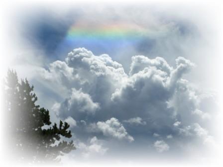Revit Cloud Services Potential